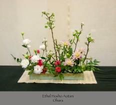 Ethel Hosho Aotani