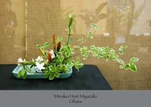 Minako Hoei Miyazaki