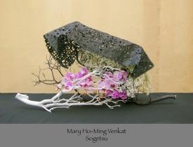 Mary Ho-Ming Venkat