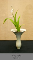 Shuji Ikeda