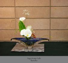 Yayoi Kasui Aoki