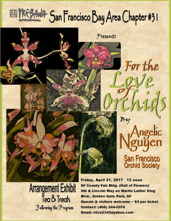 For the Love of Orchids – April 2017