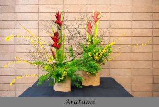Aratame School Arrangement