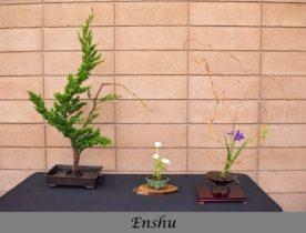 Enshu School Arrangement