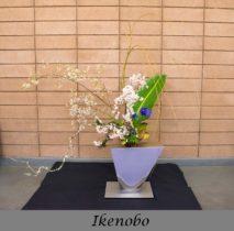 Ikenobo School Arrangement