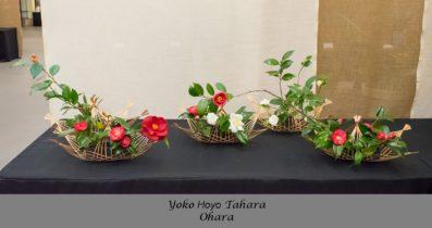 Yoko Hoyo Tahara 1