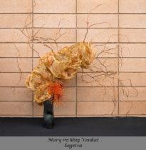Mary Ho Ming Venkat 1