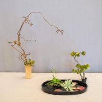 Rayko Kurasaki, Enshu School