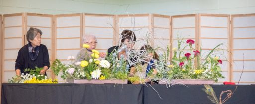 Fujimoto, Maruyama and Iwami